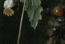 Jan Davidsz de Heem(1606-1684)