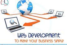 Web development company India / Animdezire a leading Web development company India.