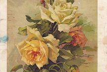 dipinti floreali