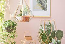 Interior Design Styles & Trends