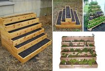 Great ideas for the garden