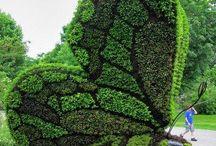 Zöld figura