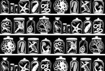 Cabinet of Curiosity / by Elizabeth Lyons