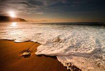 Summers at the Beach / Beach