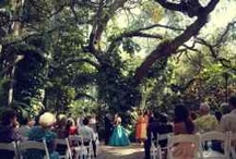 Florida Wedding Venues / Browse some of the top wedding venues located throughout Florida.