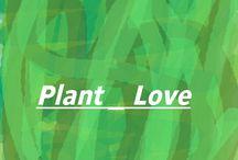 Plant _ Love