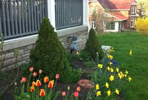 Our B&B: In Our Garden / There is a lot to discover when you walk in our garden.