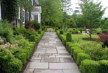 surfaces and pavings / Garden Design