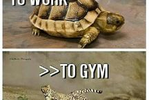 Gym Junkie / Fitness inspiration. Motivation.