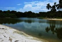 fotos de colombia / Fotos de #Colombia, lugares turísticos de #Colombia Colección de fotos de los lugares más hermosos de #Colombia, fotos de los lugares más bellos para conocer en #Colombia