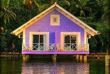purple small house