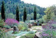 μεσογειακοί κηποι