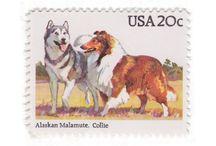 Vintage Dog Stamps