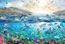 delfin a Orca