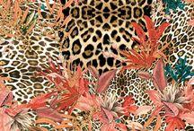 Animal - Print & Pattern