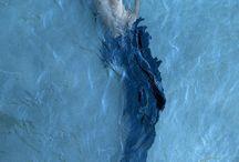 Underwater / Underwater Photography