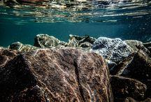 Underwater / My underwater photos