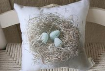 Eggs and Nests / by Barbara Long
