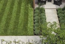 Small gardens and courtyards / by Kylie's Kraft Room
