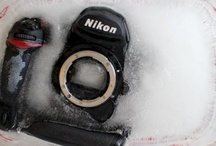 Photography / best pictures