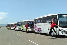 Sewa Bus Pariwisata Solo / Sewa Bus Pariwisata Full AC Harga Murah di Solo
