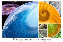 Patterns / Patterns in nature, maths, life!