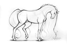 koně obrysy