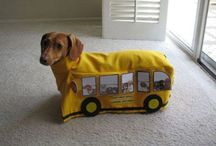 Doxie Love / by Aimee Hill-Huffman