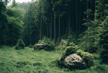 #natura#ziemia#podróże