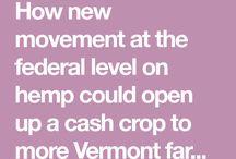 Vermont Hemp
