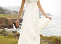 Maybe someday / My dream wedding / by Mary Lynn Dobbins
