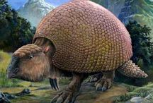 Creatures of the Past! / Dinosaurs, megafauna, and gorgonopsids, oh my! / by Erin Rein