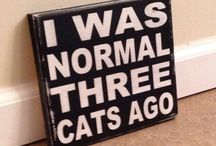 Funny Pet Signs