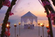 Wedding Venues that Sparkle / So you're getting married... but WHERE?