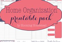 Organize / Great Organizing Solutions