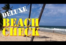 2013 Beach Bait Reports / Whitebait fishing videos. Pilchard and Sardines and other assorted bait fish. Sabiki and Cast Net videos. / by MulletRun Fishing