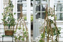 växthus/orangeri