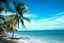 Costa Rica / Si paresser sur une plage bordée de cocotiers, plonger dans une eau tiède, observer les singes et escalader un volcan ne font pas partie de vos envies, évitez le Costa Rica!