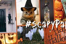 Halloween Contest #scarypaper