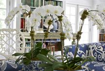 Chinoiserie Decor / by Suzette Price