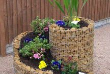 Second lot of backyard ideas / For plantar boxes exotic