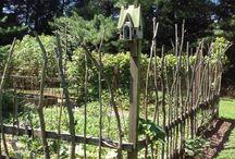 ploty a plůtky