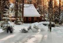 kis ház az erdő mélyén