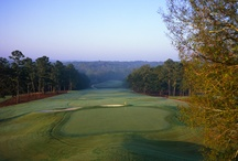 go outdoors | Macon Middle GA / Find the best golf courses, parks, and outdoor entertainment in Macon Middle Georgia.