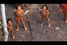 Amazonian tribes / Yanomami, Xingu, Guarani-Kaiowà, Kayapo, Rikbaksta, and some 240 other imperiled Amazonian tribes