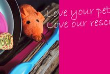 PawStore / Love your pets - love our rescues. New items and best sellers from our PawStore pet shop at Claverton Down. Free parking - dogs welcome - all profits help rescue animals.