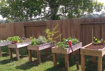 Yard and gardening