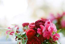 Flowers / Kwiaty, bukiety, kolory :)