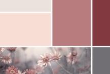 Färginspiration till hemmet