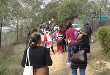 Bird Watching, The Soul's Winged Flight / A walk with Drs. Alok & Renu Tiwari